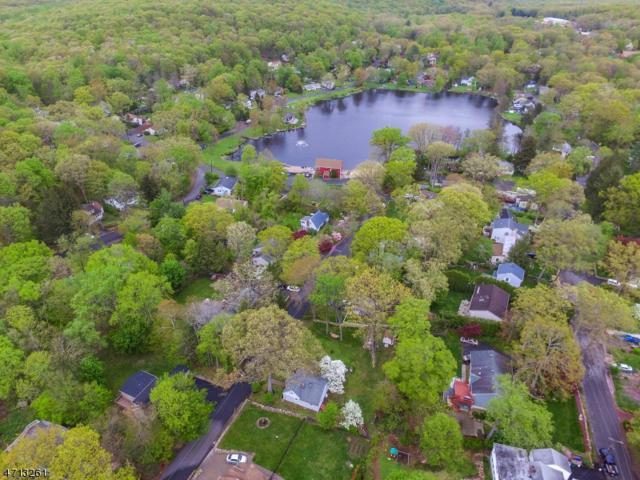 13 Whipporwill Ln, Rockaway Twp., NJ 07866 (MLS #3387082) :: The Dekanski Home Selling Team