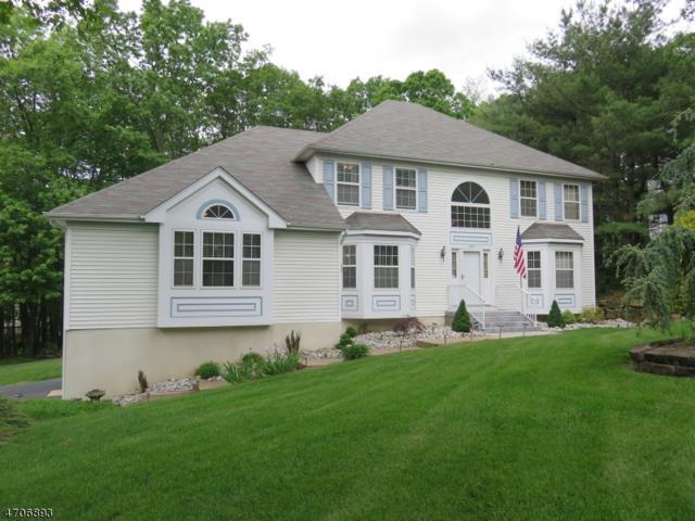 334 Mount Pleasant Ave, Rockaway Twp., NJ 07801 (MLS #3387295) :: The Dekanski Home Selling Team