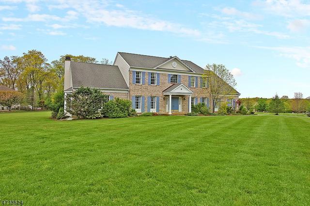 14 Salisbury Ln, Washington Twp., NJ 07853 (MLS #3387512) :: The Dekanski Home Selling Team