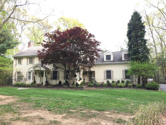 41 Wehrli Road, Washington Twp., NJ 07853 (MLS #3387607) :: The Dekanski Home Selling Team