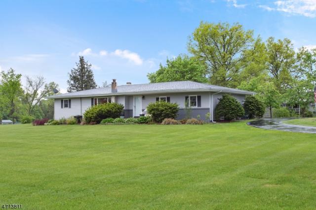 8 Central Ave, Readington Twp., NJ 08889 (MLS #3387632) :: The Dekanski Home Selling Team