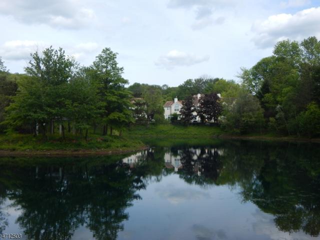 47 High Pond Ln, Bedminster Twp., NJ 07921 (MLS #3387634) :: The Dekanski Home Selling Team