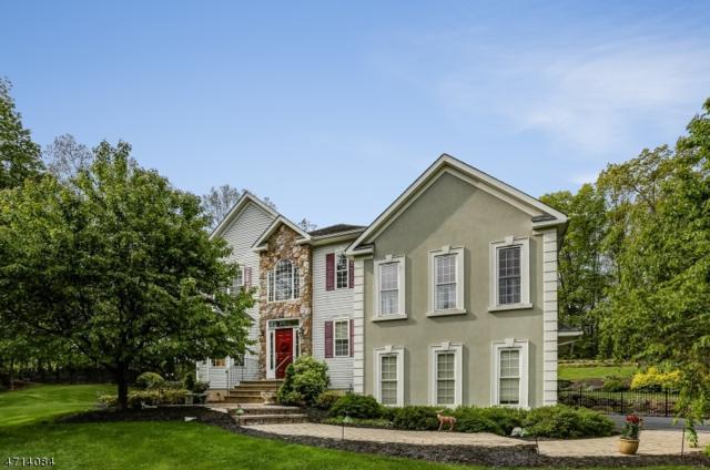 10 Heron Way, Green Twp., NJ 07821 (MLS #3387848) :: The Dekanski Home Selling Team