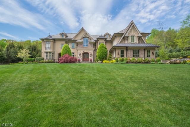 7 Pond Vw, Montville Twp., NJ 07045 (MLS #3387899) :: The Dekanski Home Selling Team