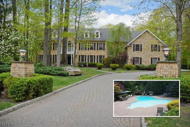 34 Douglas Dr, Sparta Twp., NJ 07871 (MLS #3387947) :: The Dekanski Home Selling Team