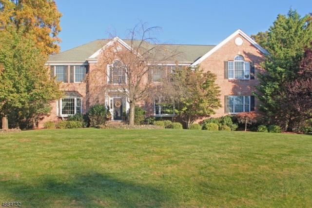 103 Eileen Dr, Cedar Grove Twp., NJ 07009 (MLS #3388085) :: The Dekanski Home Selling Team