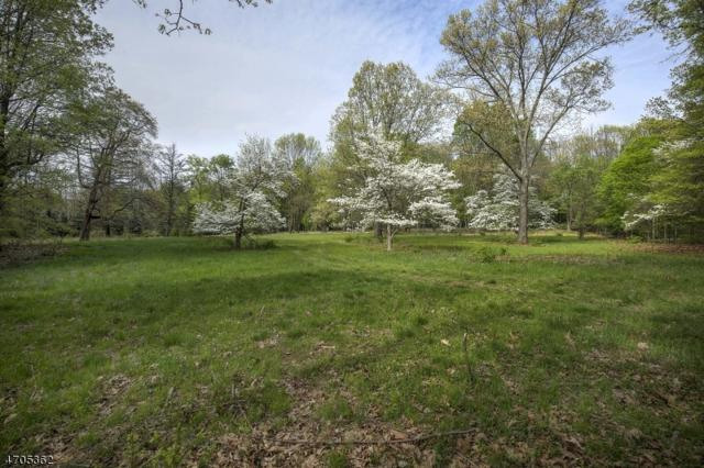 30 Overleigh Rd, Bernardsville Boro, NJ 07924 (MLS #3388111) :: The Dekanski Home Selling Team