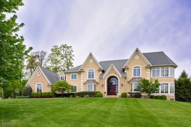 46 Geiger Ln, Warren Twp., NJ 07059 (MLS #3388418) :: The Dekanski Home Selling Team