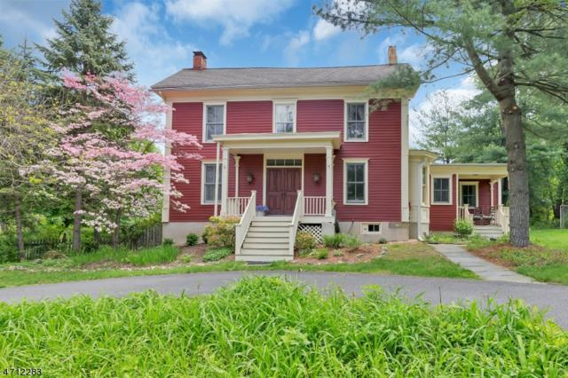 4 Spruce Run Road, Lebanon Twp., NJ 08826 (MLS #3388683) :: The Dekanski Home Selling Team