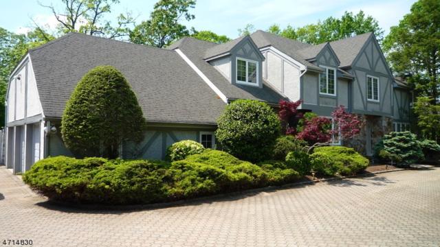 10 Carmella Ct, Cedar Grove Twp., NJ 07009 (MLS #3388804) :: The Dekanski Home Selling Team