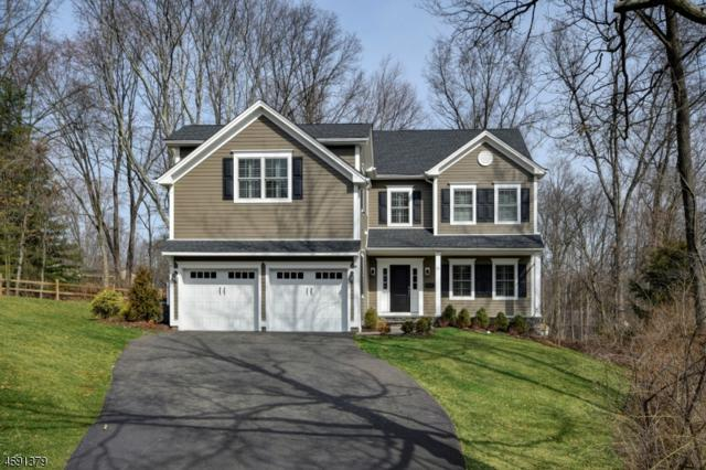 25 Parkside Ave, Madison Boro, NJ 07940 (MLS #3388813) :: The Dekanski Home Selling Team