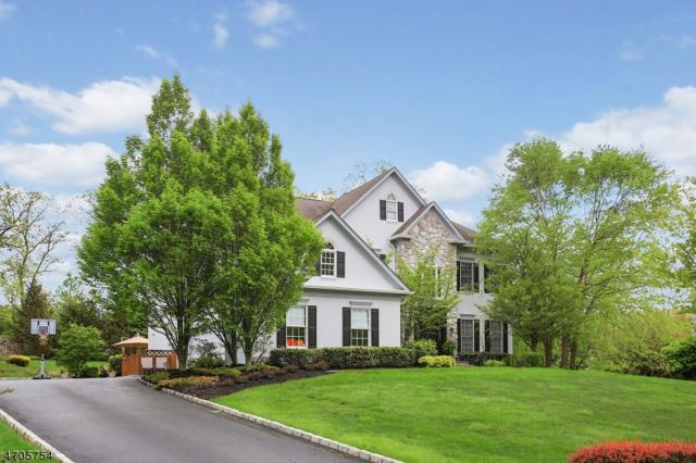 55 Ridge Rd, Green Brook Twp., NJ 08812 (MLS #3388822) :: The Dekanski Home Selling Team