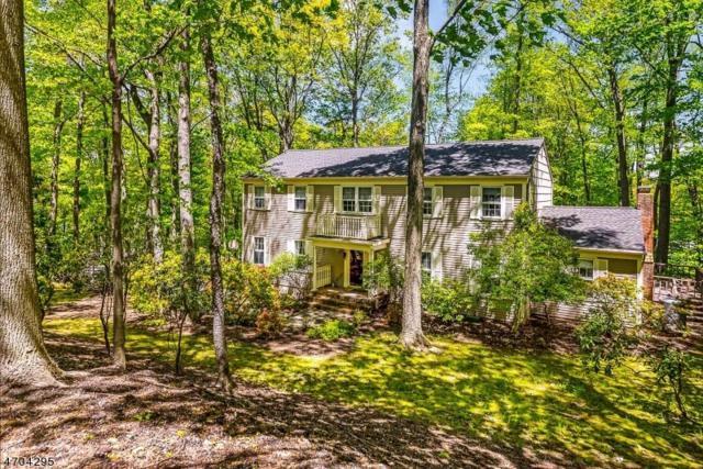 13 Deer Run Dr, Randolph Twp., NJ 07869 (MLS #3388900) :: The Dekanski Home Selling Team