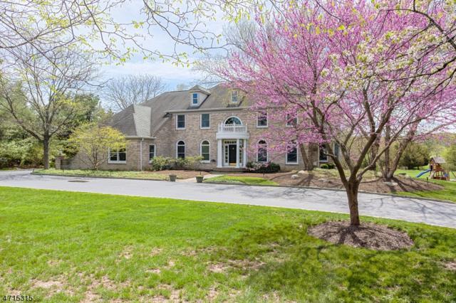 157 Bedens Brook Rd, Montgomery Twp., NJ 08558 (MLS #3389032) :: The Dekanski Home Selling Team