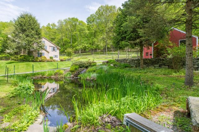564 Jockey Hollow Rd, Morris Twp., NJ 07960 (MLS #3389053) :: The Dekanski Home Selling Team