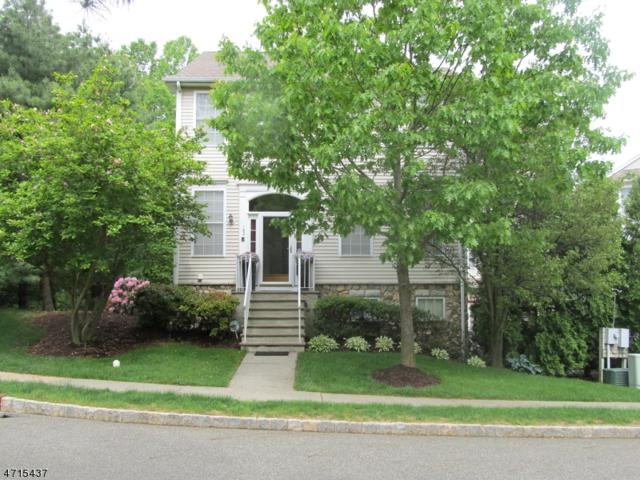 162 Arrowgate Dr, Randolph Twp., NJ 07869 (MLS #3389173) :: The Dekanski Home Selling Team