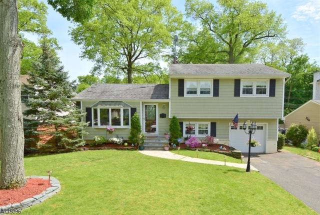 2352 Channing Ave, Scotch Plains Twp., NJ 07076 (MLS #3389231) :: The Dekanski Home Selling Team