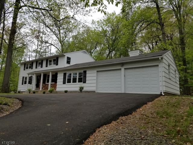 2 Lake Shore Dr, Montville Twp., NJ 07045 (MLS #3389524) :: The Dekanski Home Selling Team