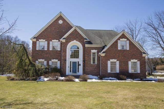 1 Cammeyer Ct, Montville Twp., NJ 07082 (MLS #3389552) :: The Dekanski Home Selling Team