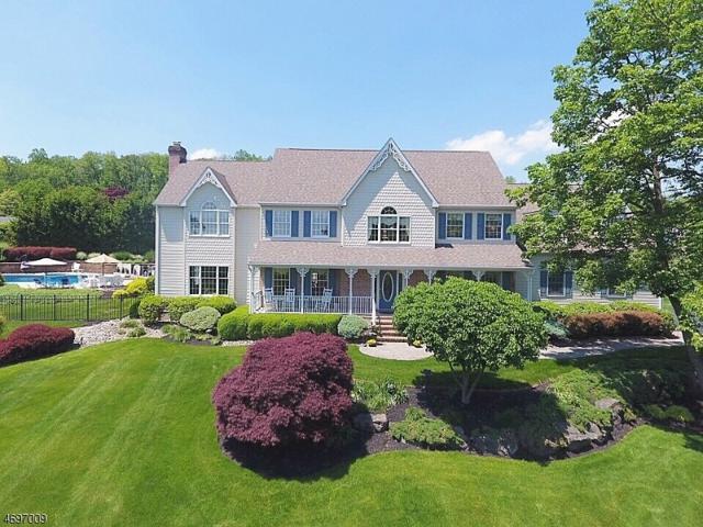 8 Alpine Pl, Raritan Twp., NJ 08822 (MLS #3389602) :: The Dekanski Home Selling Team