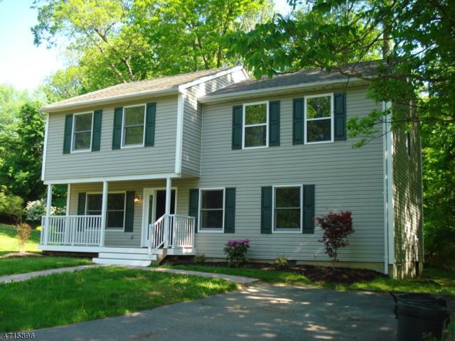 6 Martin Pl, Jefferson Twp., NJ 07847 (MLS #3389674) :: The Dekanski Home Selling Team