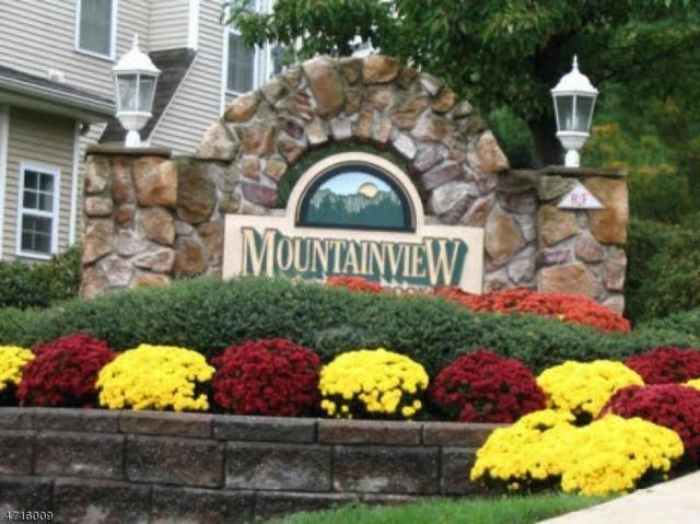1043 Robin Ct 2C, Green Brook Twp., NJ 08812 (MLS #3389748) :: The Dekanski Home Selling Team