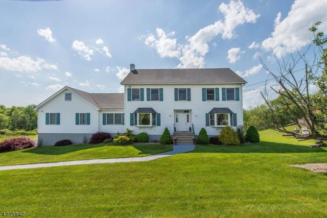 13 Mountain View Dr, Wantage Twp., NJ 07461 (MLS #3389794) :: The Dekanski Home Selling Team