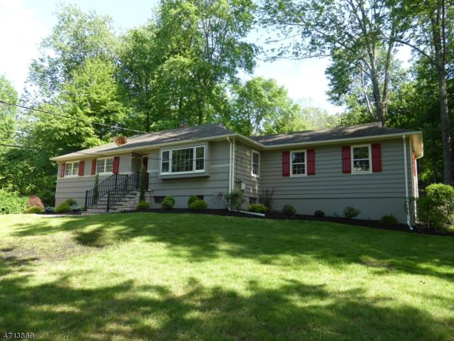 123 Lupine Way, Long Hill Twp., NJ 07980 (MLS #3389988) :: The Dekanski Home Selling Team
