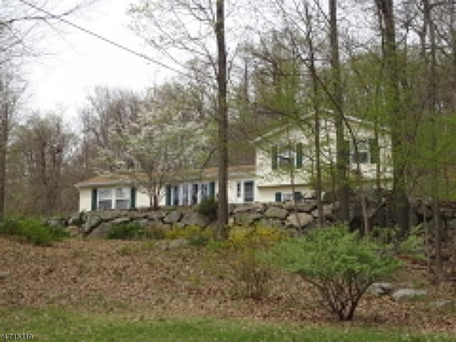 1 Logan Ln, Vernon Twp., NJ 07461 (MLS #3390261) :: The Dekanski Home Selling Team