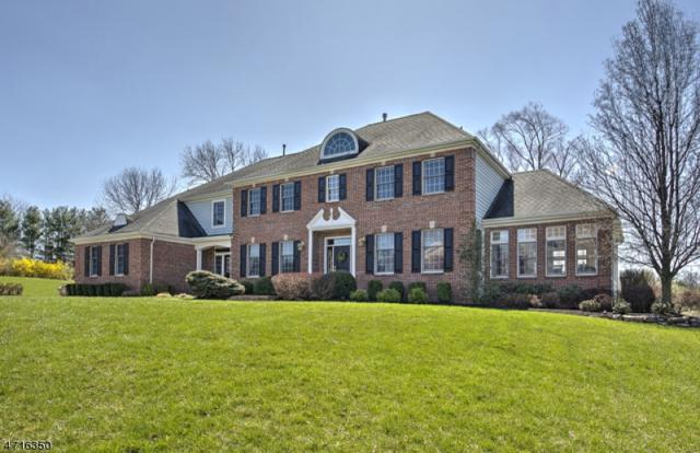 12 Fairway Dr, Readington Twp., NJ 08889 (MLS #3390395) :: The Dekanski Home Selling Team