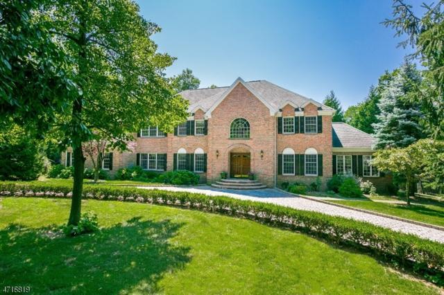 14 Charlotte Hill Dr, Bernardsville Boro, NJ 07924 (MLS #3390469) :: The Dekanski Home Selling Team