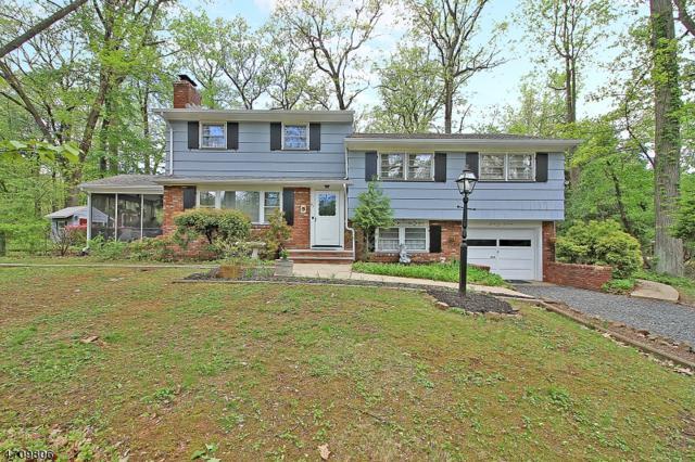 63 Morning Glory Road, Warren Twp., NJ 07059 (MLS #3390916) :: The Dekanski Home Selling Team