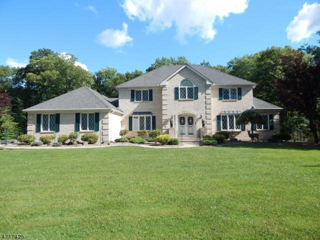 6 Davids Ln, Hillsborough Twp., NJ 08844 (MLS #3391012) :: The Dekanski Home Selling Team