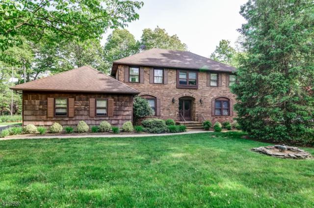 43 Old Ln, Montville Twp., NJ 07082 (MLS #3391135) :: The Dekanski Home Selling Team