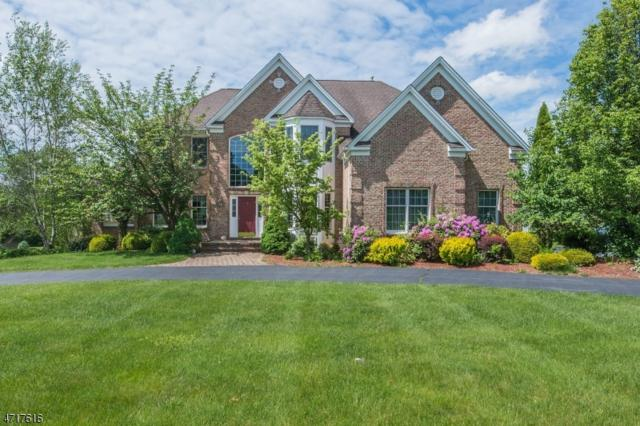 59 Quail Run, Randolph Twp., NJ 07869 (MLS #3391160) :: The Dekanski Home Selling Team