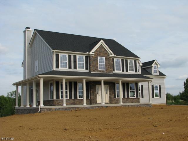 9 Highlands Way, Lopatcong Twp., NJ 08865 (MLS #3391262) :: The Dekanski Home Selling Team