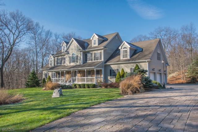 200 Rockburn Pass, West Milford Twp., NJ 07480 (MLS #3391374) :: The Dekanski Home Selling Team