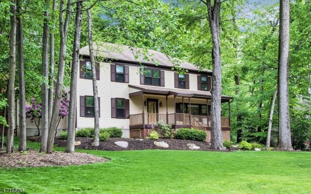 4 Blue Fern Ln, Randolph Twp., NJ 07869 (MLS #3391587) :: The Dekanski Home Selling Team