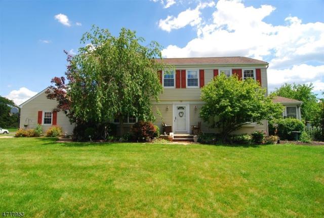 19 Piedmont Path, Hillsborough Twp., NJ 08844 (MLS #3391589) :: The Dekanski Home Selling Team