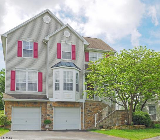 248 Winding Hill Dr, Mount Olive Twp., NJ 07840 (MLS #3391715) :: The Dekanski Home Selling Team