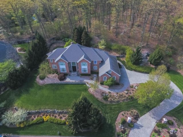 3 Briarcliff Rd, Montville Twp., NJ 07045 (MLS #3391724) :: The Dekanski Home Selling Team