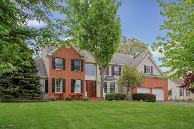 27 Spruce Hollow Rd, Green Brook Twp., NJ 08812 (MLS #3391802) :: The Dekanski Home Selling Team