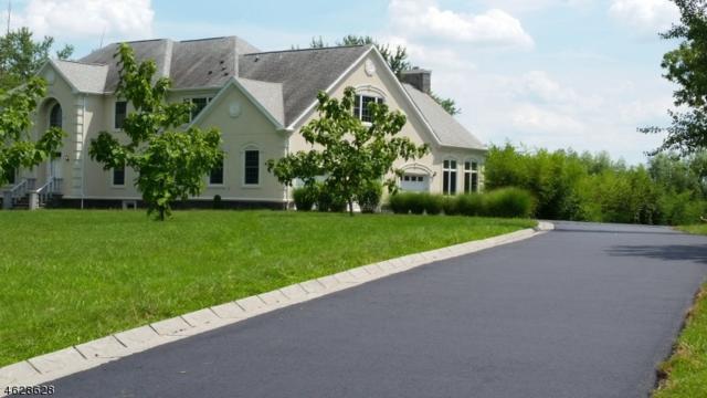 112 Robin Way, Readington Twp., NJ 08853 (MLS #3391833) :: The Dekanski Home Selling Team