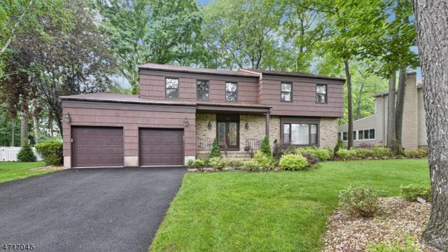 146 Webster Dr, Wayne Twp., NJ 07470 (MLS #3392123) :: The Dekanski Home Selling Team
