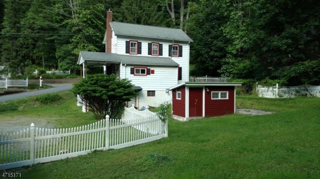 53 Dutch Hill Rd, Lebanon Twp., NJ 08827 (MLS #3392262) :: The Dekanski Home Selling Team