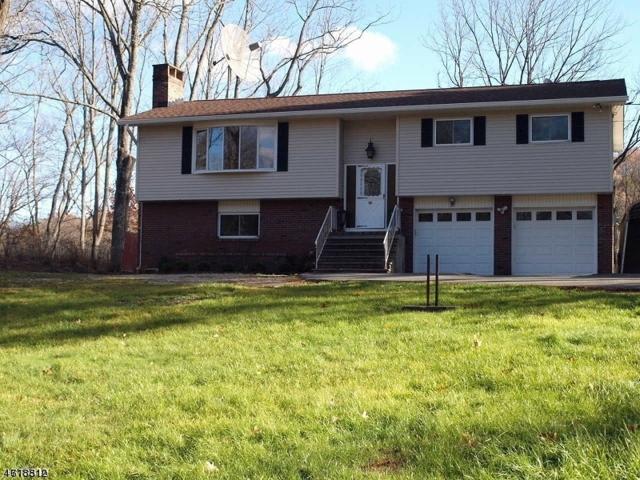 911 Homestead Dr, Stillwater Twp., NJ 07860 (MLS #3392285) :: The Dekanski Home Selling Team