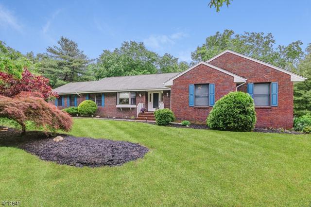 15 Vickies Pl, Long Hill Twp., NJ 07946 (MLS #3392334) :: The Dekanski Home Selling Team