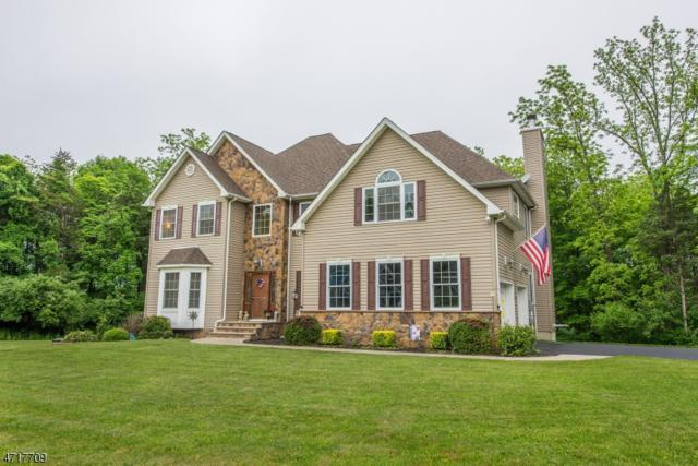 22 Fawn Hollow Dr, Green Twp., NJ 07860 (MLS #3392602) :: The Dekanski Home Selling Team