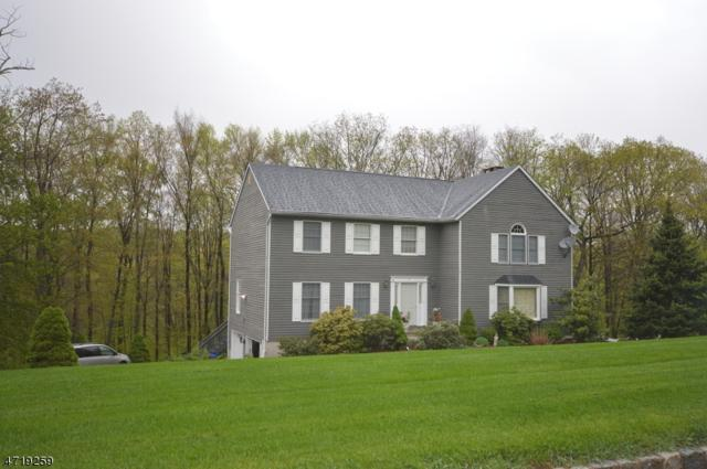 11 Bel Air Dr, Sparta Twp., NJ 07871 (MLS #3392739) :: The Dekanski Home Selling Team