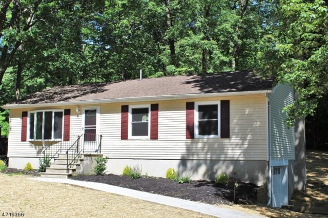 18 New York Ave, Wantage Twp., NJ 07461 (MLS #3392867) :: The Dekanski Home Selling Team